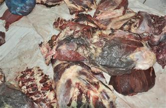 ضبط 150 كجم لحوم منتهية الصلاحية قبل بيعها في منيا القمح