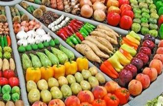استقرار أسعار الخضراوات والفاكهة اليوم الخميس 31-12-2020