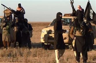 مقتل 11 عنصرا في الحشد الشعبي العراقي في هجوم لتنظيم داعش شمال بغداد