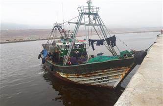 نقيب الصيادين: القبض علي ٣ مصريين بالسعودية بعد خلافات مع الكفيل