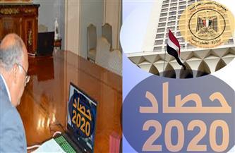 إنهاء أزمة العالقين ورعاية المواطنين المصريين في الخارج.. «2020» صفحة مضيئة في مسيرة الخارجية المصرية