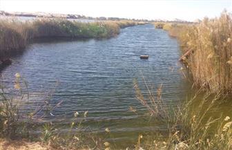 مقترح لإعادة استخدام مياه الصرف الزراعي لري مناطق جديدة في سيوة| صور