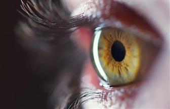 تجارب ناجحة تحيي آمال البصر عند 40 مليون مكفوف بالعالم
