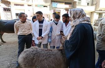 جامعة سوهاج تطلق قوافلها البيطرية الأسبوعية لقرية الرويهيب بمركز المنشاة | صور