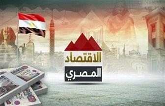 «النقد الدولي»: الاقتصاد المصري يواصل تفوقه ويسجل ثاني أكبر اقتصاد عربي في 2020