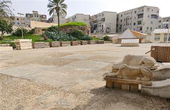 السياحة والآثار توضح حقيقة الصور التي تم تداولها عن منطقة آثار كوم الشقافة | صور