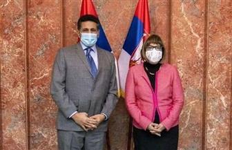 سفير مصر في بلجراد يلتقي نائبة رئيسة وزراء صربيا لتعزيز التعاون الثنائى بين البلدين