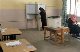 اللجان الانتخابية بالمنوفية تفتح أبوابها أمام الناخبين..وانتظام عملية التصويت لليوم الثانى| صور