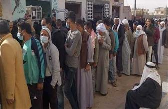 تزايد الناخبين بلجان الشيخ زويد في شمال سيناء  صور