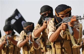 """تحقيق أممي: تنظيم """"داعش"""" اختبر أسلحة بيولوجية ضد سجناء في العراق"""