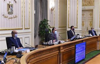 """باستثمارات تفوق 300 مليون دولار.. مصر تقتحم ملف تحويل المخلفات البلدية الصلبة لـ""""طاقة"""""""