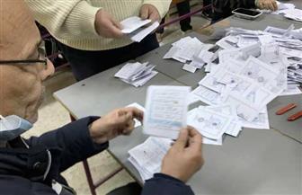 بيان إحصائي.. تقدم «دندش» و«عدوي» في لجنة 110 بحي ثالث بالدائرة الأولى في الإسماعيلية