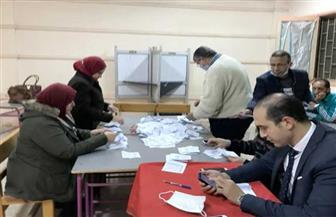 حصر عددي.. تقدم «دندش» و«العدوي» في لجنة 126 بالدائرة الأولى بالإسماعيلية