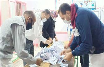 حصر عددي.. تقدم «داوود» و«رخا» في مركز كفر البطيخ بدمياط