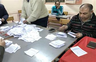 بيان إحصائي.. 9% نسبة المشاركة في لجنة 115 بمدرسة النيل في المنصورة