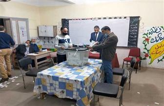 حصر عددي.. فوز أسامة عبدالعاطي ومحمد السعيد بمقعدي دائرة السنبلاوين