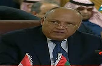 نص كلمة وزير الخارجية سامح شكري في اجتماع الجامعة العربية الطارئ بشأن فلسطين