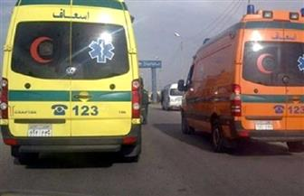 مصرع وإصابة 16 مواطنا في حادث تصادم بين سيارتين بالمنيا