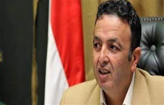 اتحاد المرشدين العرب يطالب بمنصة للدفاع عن السياحة البينية ووضع إستراتيجية لتنمية إفريقيا
