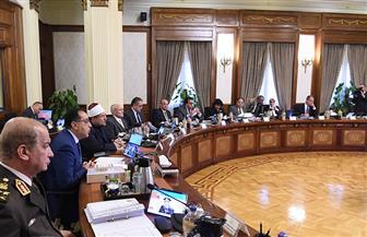 مجلس الوزراء يوافق على تعديل إجازة الصيادلة وأطباء الأسنان
