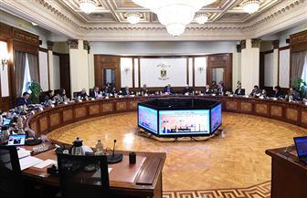 الحصاد الأسبوعي لمجلس الوزراء خلال الفترة من 7 حتى 13 فبراير 2020 | إنفوجراف