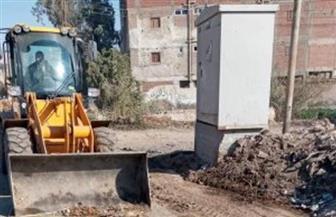 """رفع 35 طن مخلفات وتراكمات ومسح للطريق في قرية """"بشبيش"""" بالمحلة الكبرى"""