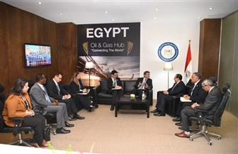 هاردى: مصر أحد أهم أولويات مناطق عمل وكالة التجارة والتنمية الأمريكية
