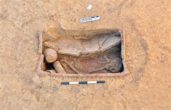 بعد اكتشاف 83 مقبرة بالدقهلية.. كيف ظهرت حضارة نقادة الثالثة وبوتو في مصر؟  | صور