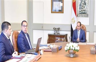 الرئيس السيسي يبحث استراتيجية عمل هيئة المحطات النووية وجهود الميكنة بها