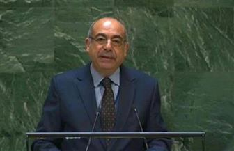مصر تتولى رئاسة المجموعة الإفريقية في نيويورك خلال الشهر الجاري