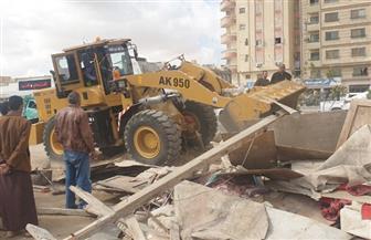 جهاز 6 أكتوبر يشن حملتين لإزالة الإشغالات وضبط المخالفات بالمدينة | صور