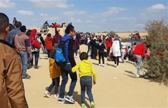 54 ألف زائر لمحمية وادي الريان في الفيوم | صور