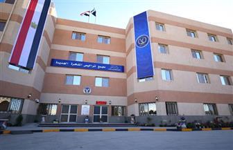 في أول يوم عمل.. مواطنون يشيدون بالخدمة في مجمع مرور القاهرة الجديدة | صوروفيديو