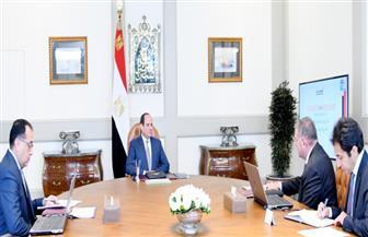 الرئيس السيسي يوجه بمواصلة جهود تطوير شركات قطاع الأعمال العام