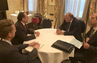 وزير الخارجية يلتقي نظيره النمساوي بميونخ | صور