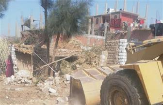 إزالة 13 حالة تعد على أراضي أملاك الدولة بمركز فرشوط بقنا | صور