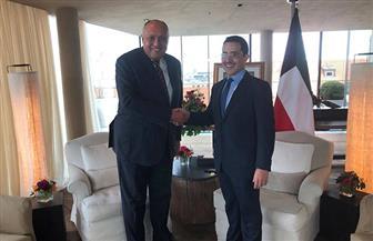 وزير الخارجية يعقد لقاء ثنائيا مع نظيره الكويتى على هامش فعاليات مؤتمر ميونخ للأمن | صور