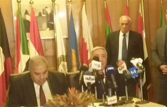 """المتحدث باسم """"الدستورية"""": مصر أحدثت طفرة في قيادة الاتحاد الإفريقي"""