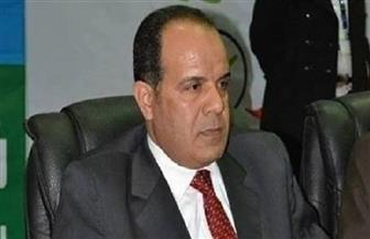 «مهنى»: الرئيس السيسي أعاد مصر لهيبتها ومكانتها وسط دول العالم