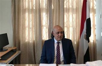 سفير مصر لدى المجر: العلاقات الثنائية ينتظرها مستقبل واعد .. وبودابست تقدر مواقف الرئيس السيسي| صور