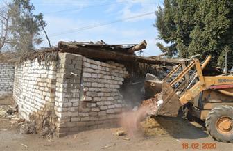 إزالة 575 حالة تعد على أراضي الدولة في بني سويف| صور