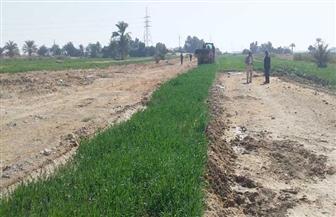 إزالة تعديات على 136 فدانا من أملاك الدولة شمال الأقصر| صور