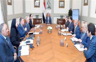 الرئيس السيسي يوجه بالتركيز على الآفاق المستقبلية للصناعة المتمثلة في المركبات الكهربائية