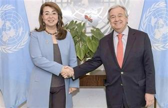 غادة والي وكيل السكرتير العام للأمم المتحدة تؤدي حلف اليمين وتلتقي قيادات المنظمة|صور