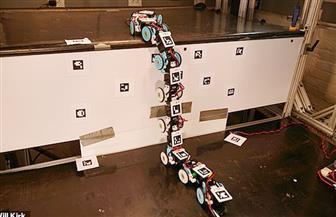 روبوت على شكل ثعبان للمساعدة في أعمال البحث والإنقاذ