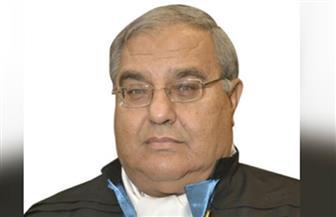 """رؤساء المحاكم الدستورية الإفريقية يدعون لإضفاء الصفة """"المؤسسية"""" على اجتماعات القاهرة"""