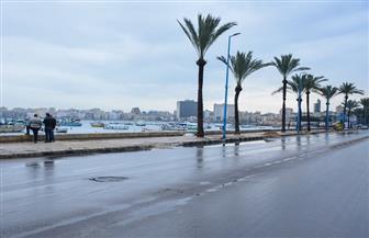 أمطار متوسطة تضرب أنحاء من الإسكندرية.. واستمرار حركة الملاحة البحرية