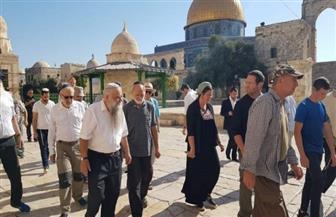 في حراسة شرطة الاحتلال.. 48 مستوطنا يقتحمون باحات المسجد الأقصى