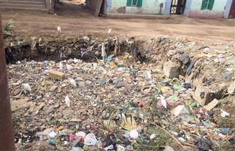 البيئة تستجيب لأهالي المنوفية وتزيل تراكمات القمامة بترعة قرية رزين