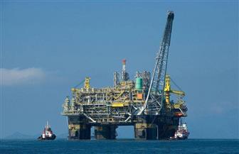 وزير البترول: منطقة البحر الأحمر جذبت شركات عالمية للعمل في مصر